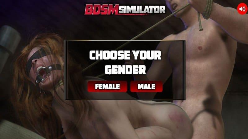 BDSM Simulator Game
